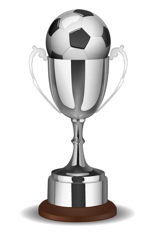 262 Fodbold Pokal   fairplay