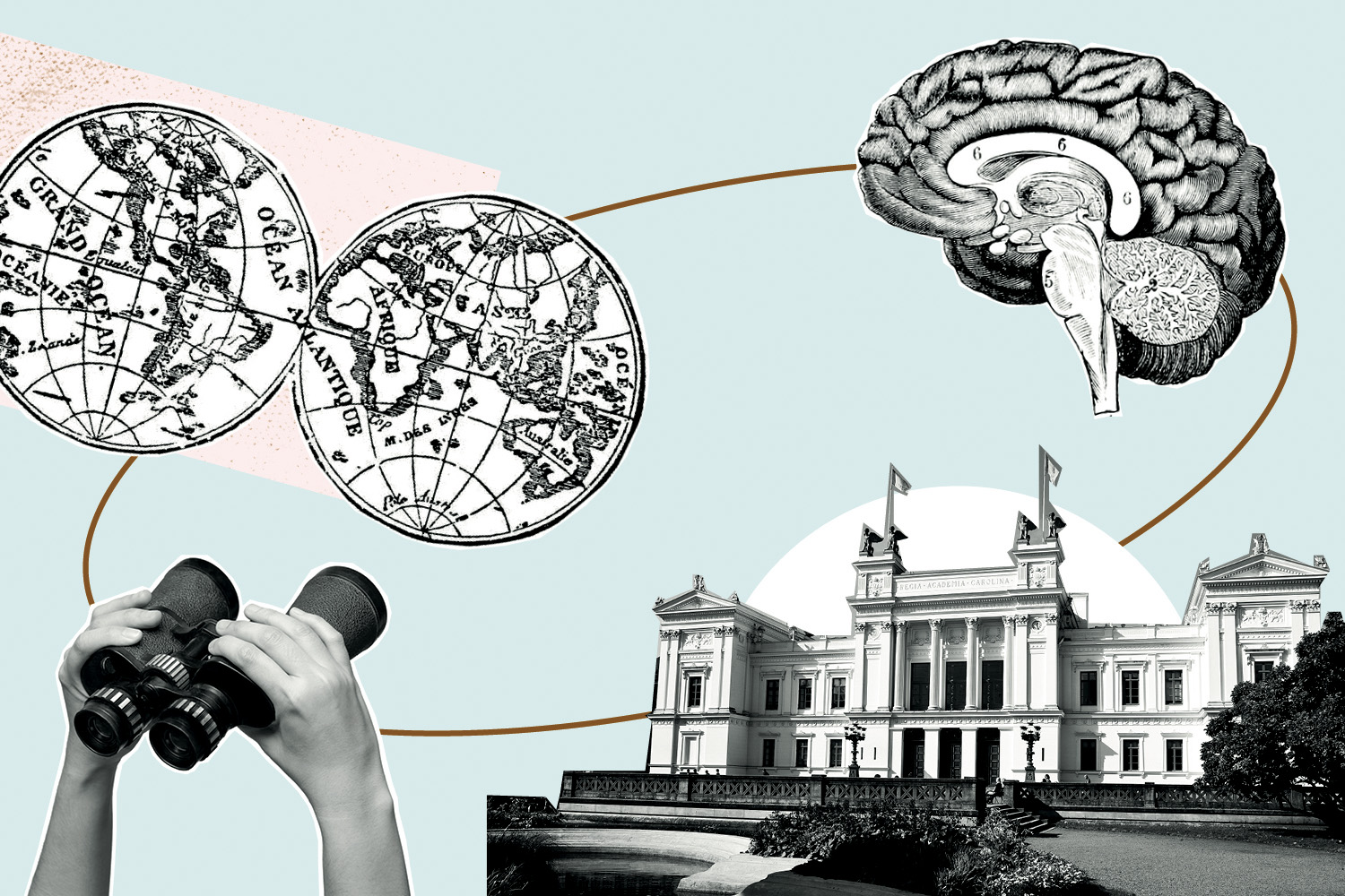 The university building, a brain, a world map and a pair of binoculars. Illustration.