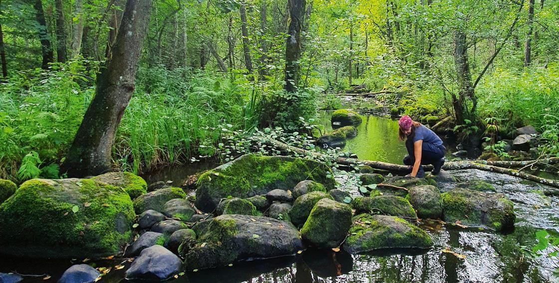 Kvinna vid bäck i skog. Foto.