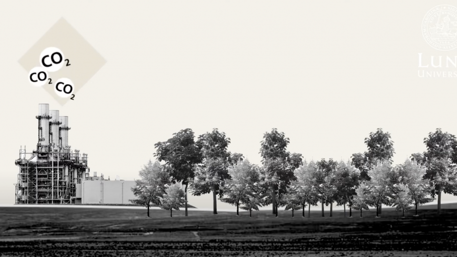 A field with trees and a factory illustrating negative emissions. Illustration.