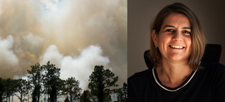 En brinnande skog i Florida och Emily Boyd, hållbarhetsprofessor vid Lunds universitet. Foto: Unsplash och Peter Frodin.