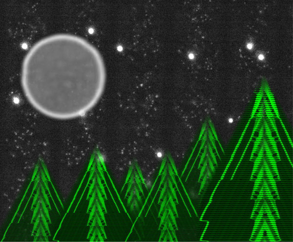 329 jason microfluidic firtrees 2018 xmas 600pxls