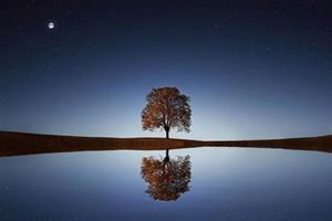 410 reflektion (002)
