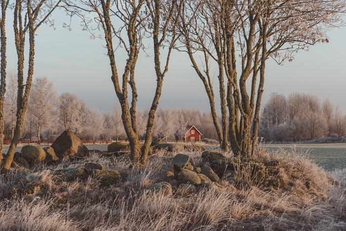 176 Winter nature landscape in Sweden 640829484 7003x4674