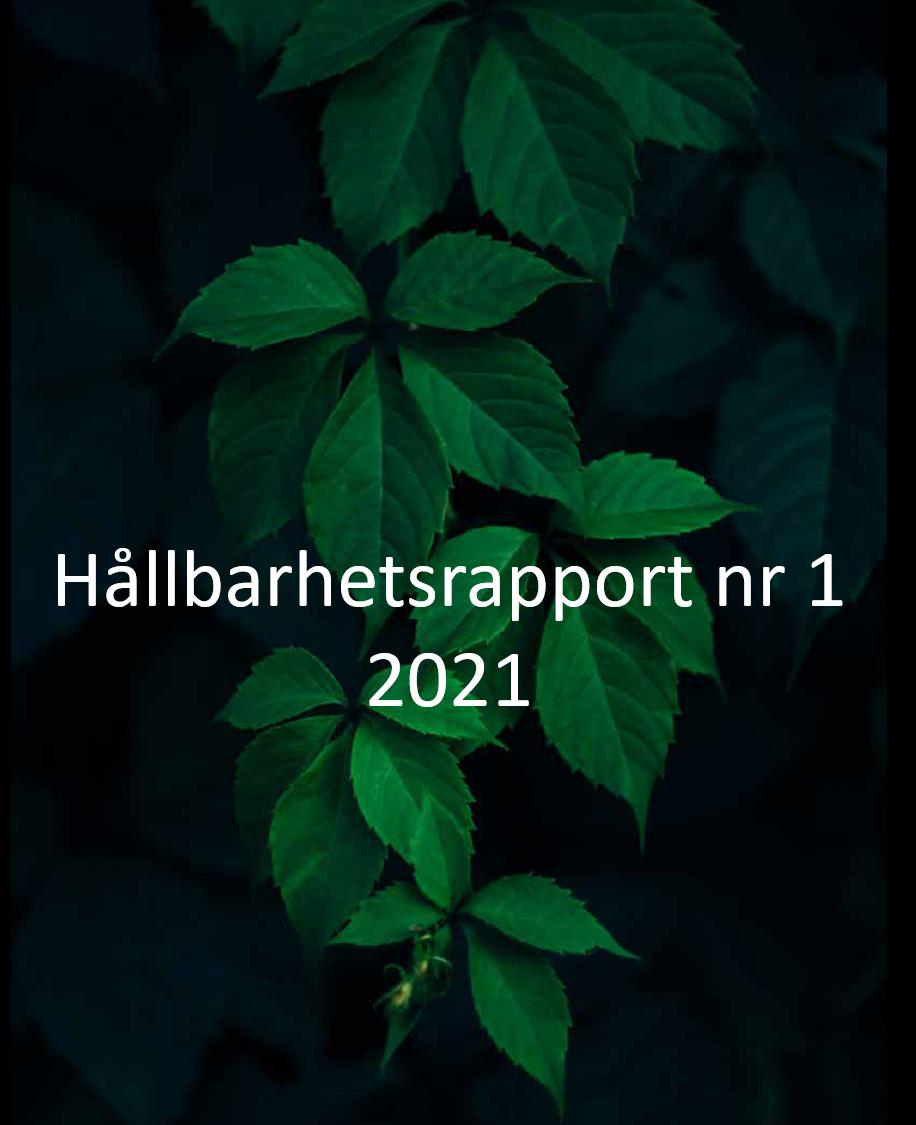 419 H%c3%a5llbarhetsrapport 1 2021 I