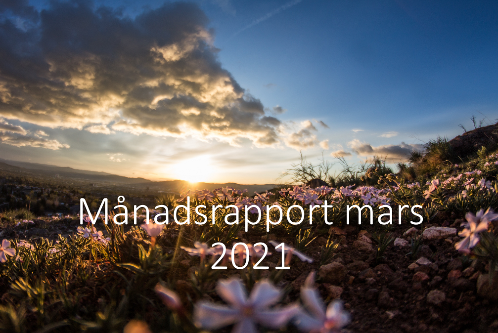 420 m%c3%a5nadsrapport mars 2021 1