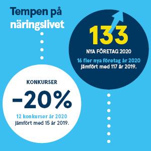 1042 Statistik N%c3%a4ringsliv