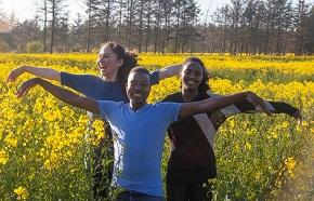 Tre unga människor på ett rapsfält med utsträckta armar