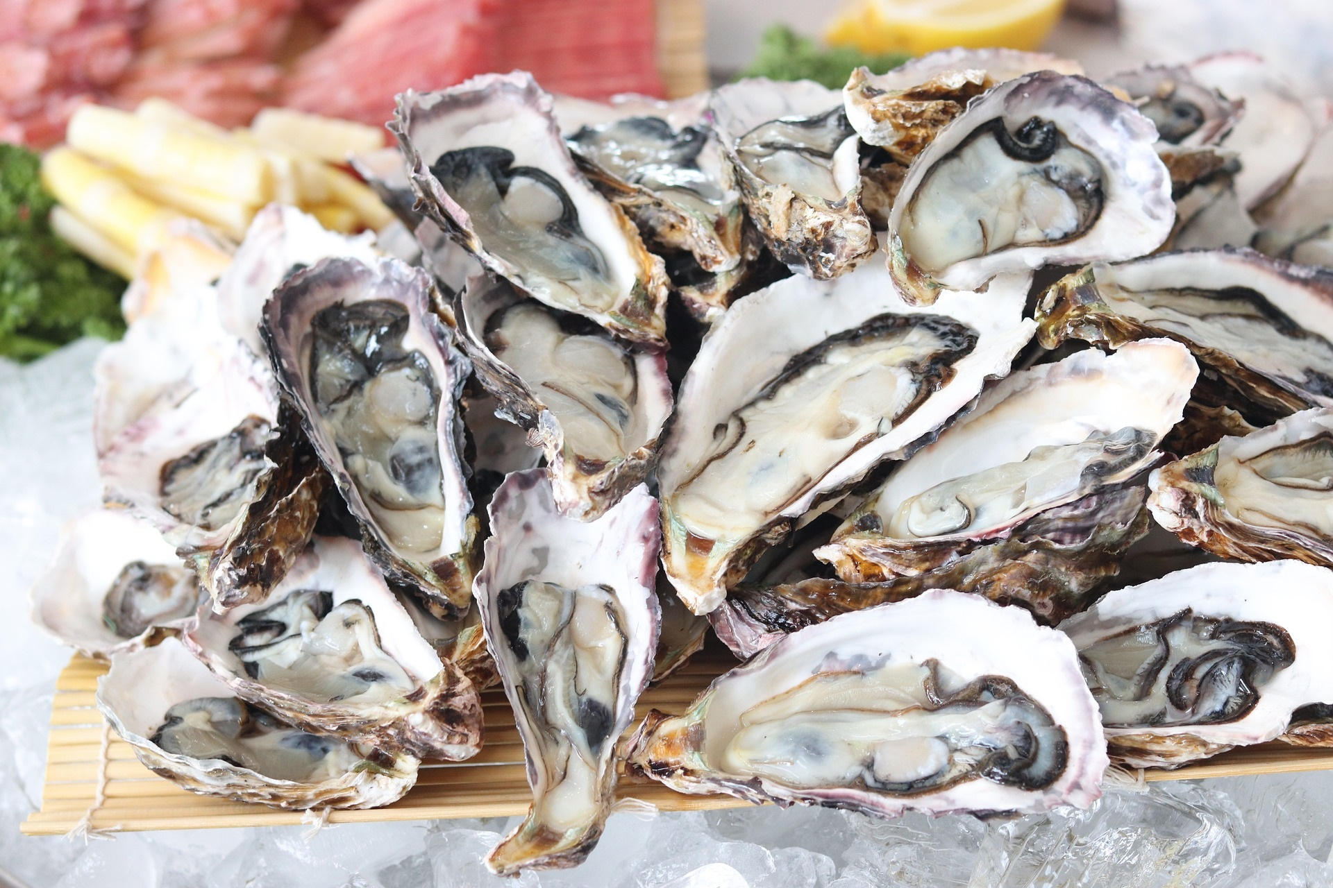 10467 oysters