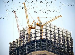 11663 building 768815 285