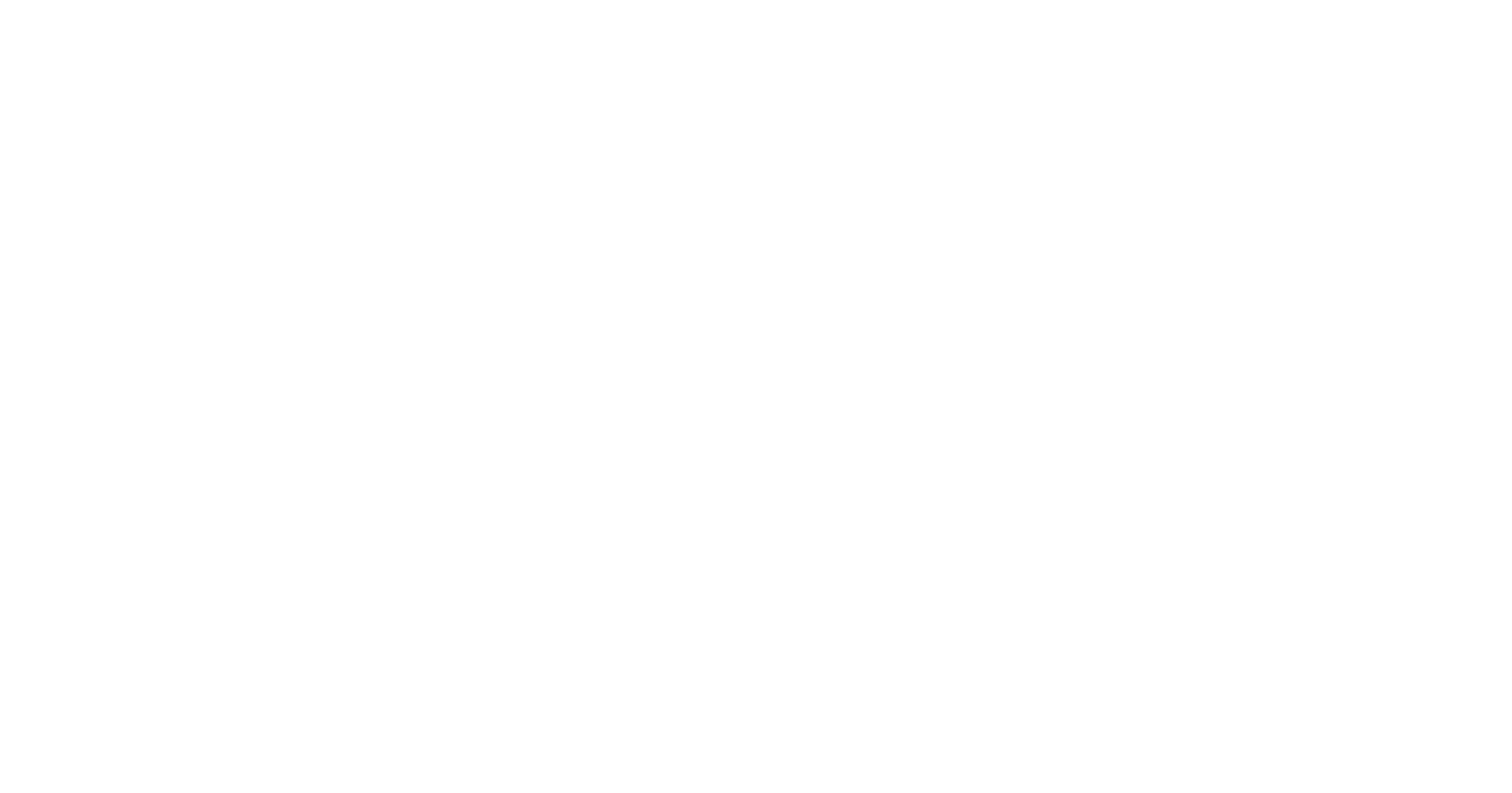 9497 Logotyp negativ