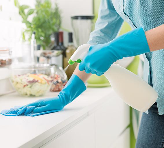 446 rengoring desinfekt